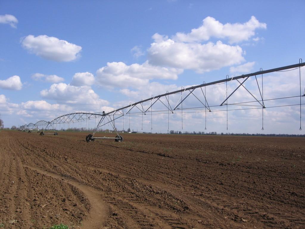 Ukraine Carrot Project